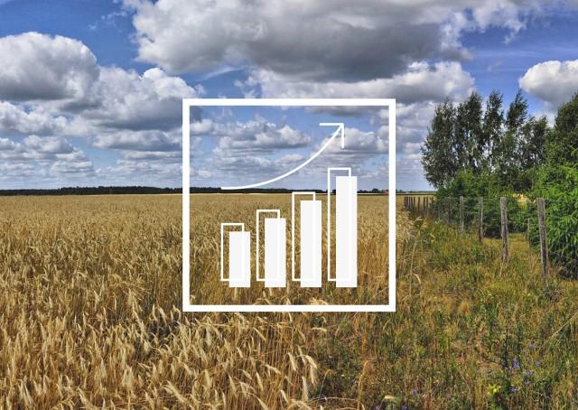 """Rolnik w 2021 roku więcej zarobi na ziarnie, ale jeszcze więcej wyda na nawozy, wykazuje Wielkopolska Izba Rolnicza. """"Mamy tutaj do czynienia z niekorzystnym zjawiskiem rozwarcia tzw. nożyc cenowych""""."""
