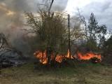 """Potężny pożar w okolicach Paterka. Płonie kilka hektarów lasu. """"Teren po nawałnicy, bardzo trudno dostępny"""""""