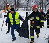 Ptasia grypa we Wrocławiu. Martwe łabędzie w Odrze. Nie spaceruj nad rzeką, nie dokarmiaj ptaków