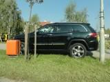 Jak oni parkują: safari na trawniku
