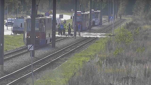 Policja informuje, że po potrąceniu ruch samochodowy w tym miejscu odbywa się płynnie