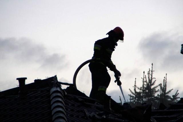 Pożar wybuchł w środę, 26 lutego, z samego rana. Palił się dach domu przy ul. Tarpanowej. Niestety budynek nie nadaje się do zamieszkania.O pożarze pisaliśmy rano w materiale: Pożar domu jednorodzinnego w Zielonej GórzeTeraz podajemy więcej szczegółów i publikujemy zdjęcia. Po przybyciu na miejsce strażacy zastali w pełni rozwinięty pożar poddasza, obejmujący również znaczną część powierzchni dachu domu jednorodzinnego. – Mimo sprawnej akcji i szybkiego opanowania pożaru, zupełnemu zniszczeniu uległa centralna część dachu, która runęła do środka budynku – mówi st. kpt. Arkadiusz Kaniak, rzecznik zielonogórskich strażaków. Z ogniem walczyły trzy zastępy zawodowej straży pożarnej, cztery zastępy OSP, policja, pogotowie gazowe oraz pogotowie energetyczne.Budynek nie nadaje się do zamieszkania. Nikt z mieszkańców nie ucierpiał, nie było również zagrożenia przeniesienia ognia na budynki sąsiadujące. Okoliczności powstania pożaru są wyjaśnianie. Na miejscu zdarzenia pojawili się przedstawiciele Departamentu Bezpieczeństwa i Zarządzania Kryzysowego zielonogórskiego magistratu, którzy zorganizowali pomoc dla mieszkańców.Zobacz też:  Zielona Góra. Pożar magazynu na terenie giełdy rolno-towarowej