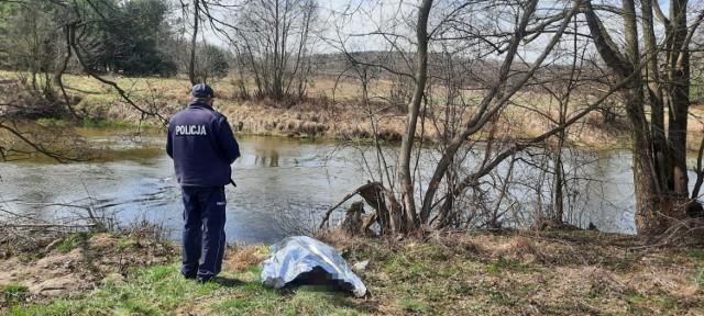Zwłoki kobiety wyłowione z rzeki Pilicy, ciało zauważył wędkarz. Policja zatrzymała partnera kobiety.