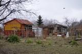 Boom na ogródki działkowe: wybierają zielone RODos zamiast jechać na słoneczne Rodos