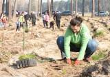 Zielona Góra Przylep. Wspólne sobotnie sadzenie lasu stało się okazją do połączenia przyjemnego z pożytecznym [ZDJĘCIA, WIDEO]