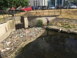 Kanał Trynka w centrum Grudziądza zmienił się w wysypisko śmieci! Sprzątanie potrwa dwa dni [zdjęcia]