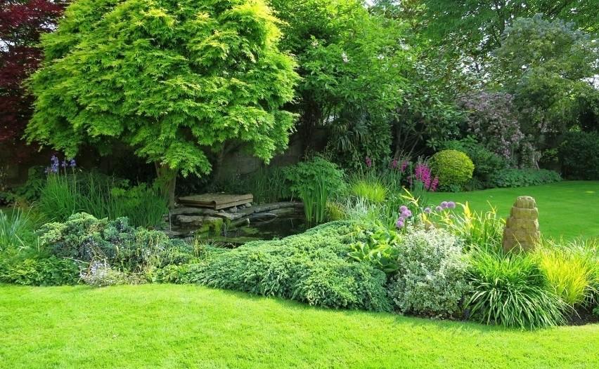 Jak Urządzić Ogród W Stylu Angielskim Porady Instrukcje