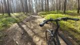 Asfaltowa ścieżka rowerowa i oznaczone leśne trasy dla cyklistów, to wszystko znajdziecie w gminie Łubniany
