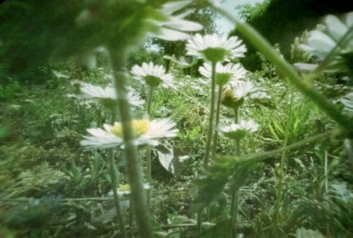 Cztery pory rokuKalendarz Zoffi - wystawa fotografii otworkowych.
