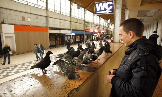 Dziesięć lat temu trwał remont dworca Wrocław Główny. Dziś jest piękną wizytówką Wrocławia. A pamiętacie jeszcze jak wyglądał przed remontem? Zobaczcie naszą galerię!