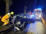 Groźny wypadek samochodowy pod Poznaniem. Auto osobowe uderzyło w drzewo. Na szczęście nikomu nic się nie stało