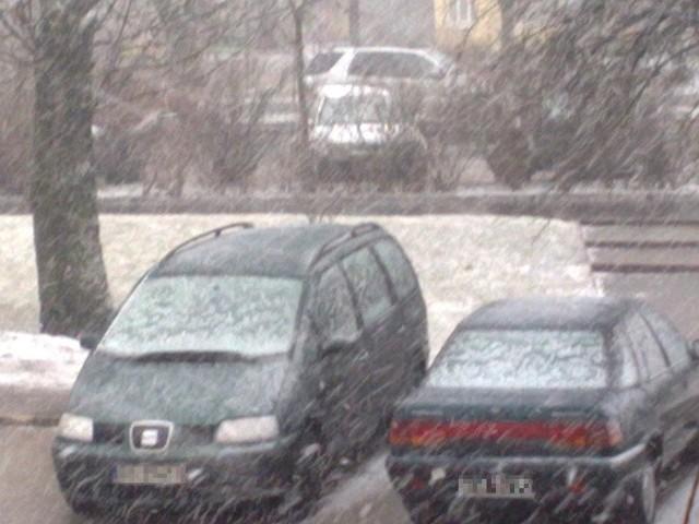 Śnieg zaczął padać w centrum miasta