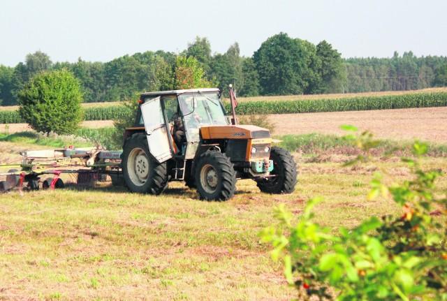 Badania będą prowadzone w gospodarstwach rolnych należących do osób fizycznych