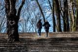 Gdzie iść na randkę w Poznaniu w czasach pandemii? Gdzie zabrać dziewczynę lub chłopaka? Miejsca do randkowania, gdy kawiarnie są zamknięte