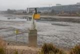Poznań: Jezioro Maltańskie bez wody. Zobacz niecodzienne zdjęcia. Co znaleziono na dnie? Były deskorolki i... wiertarka