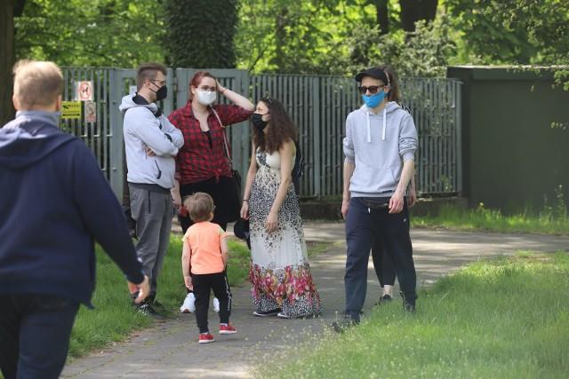 Majówka podczas epidemii koronawirusa? Zobaczcie jak łodzianie spędzali sobotę w ogrodzie botanicznym. Łódzki Botanik jest znów otwarty i zaprasza spacerowiczów.