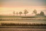 Kwaśna gleba powoduje większe koszty dla gospodarstw, wymaga większego nawożenia. Gdzie w Polsce jest najgorzej?