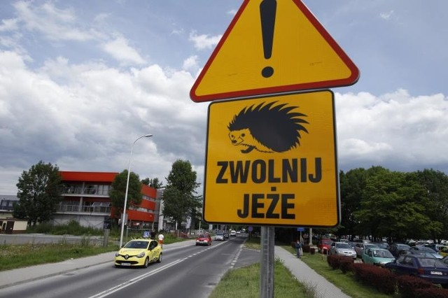 Znak stanął na ulicy Oleskiej.