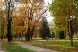 Myślenice. Park na Zarabiu poleca się na jesienny spacer. I czeka na patrona [ZDJĘCIA]