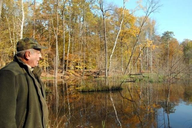 Leśniczy Lesław Buczkowski pokazuje dolinę zalaną  w wyniku działalności bobrów. - Kiedyś bobry wybierały miękkie drzewa liściaste. Teraz tną wszystko. Nawet sośnie nie przepuszczą.