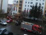 Ul. Łagodna. Straż pożarna musiała użyć drabiny (zdjęcia)