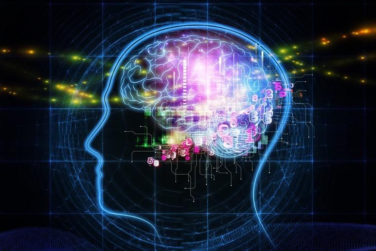 Czy to możliwe, by wiek biologiczny kobiecego mózgu różnił się aż o 3 lata w porównaniu do mózgu mężczyzn? Według naukowców różnica ta wychodzi na korzyść paniom. Czy to dlatego żyją one dłużej niż panowie?