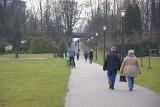 Twardy lockdown w Polsce. Ale Park Śląski zachęca do spacerów i przejażdżek kolejką Elką. Zoo i skansen są otwarte