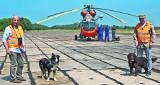 Lotnisko w Darłowie. Nowatorska metoda wypłaszania ptaków