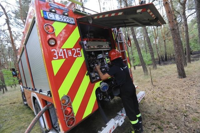 Do pożaru poszycia lasu doszło w czwartek przed południem niedaleko skrzyżowania ulic Zagonowej i Ugory w Toruniu.- To nie był na szczęście duży pożar – powiedział nam Andrzej Seroczyński z Komendy Miejskiej Państwowej Straży Pożarnej w Toruniu. - Został szybko zgłoszony i szybko opanowany. W akcji brał udział jeden wóz bojowy.Wszystko wskazuje na to, że przyczyną pojawienia się ognia było jego nieumyślne zaprószenie.Nie był to jedyny czwartkowy pożar poszycia lasu w Toruniu i okolicy.- Jest ich dość sporo – powiedział nam w czwartkowe popołudnie Andrzej Seroczyński.W południe poszycie paliło się również w okolicy ulicy Chrzanowskiego. Tam ogień był już znacznie większy, bo musiało go gasić kilka wozów bojowych. Poza tym wiał dość silny wiatr i istniało duże niebezpieczeństwo, że może się rozwinąć.Strażacy wyjeżdżali również do podobnych interwencji w okolice ulicy Nieszawskiej i Przy Nasypie w pobliżu Kluczyków.Zobacz koniecznie: Na wakacje planujemy wydać mniej niż przed rokiem