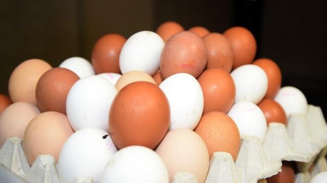 Wpływ na ceny i podaż jaj w Europie ma systematycznie rosnący import z Ukrainy.