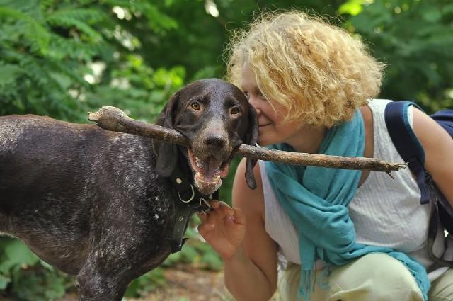 Marzysz o adopcji psa? Jego znalezienie ułatwi aplikacja stworzona przez wrocławskich licealistów