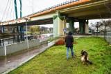 Jest kolejna ekspertyza w sprawie Mostu Uniwersyteckiego w Bydgoszczy. Takie są jej wyniki