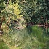 Rzeka Wilkus