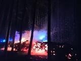Pożar lasu w koło Górzykowa. Akcja gaśnicza trwała wiele godzin