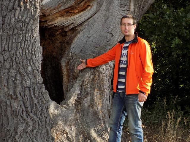 - Zabytkowe drzewo może runąć - wskazuje Piotr Grzych.