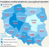 Badanie wiarygodności. Firmy z województwa łódzkiego zajęły 11. miejsce w kraju [INFOGRAFIKA]