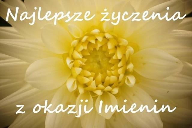 Andrzejki 2018 życzenia Na Imieniny Dla Andrzeja śmieszne