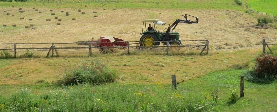 Fantastyczny Ceny ziemi rolnej 2017. Ile w Polsce kosztuje hektar? [województwa UR06