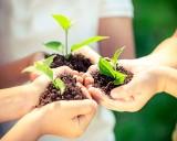 Znajdź zieloną planetę. Weź udział w ekologicznych warsztatach