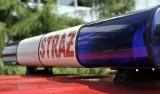 Zgierzynka: Auto osobowe uderzyło w drzewo. Jedna osoba ranna. Na miejscu lądował śmigłowiec ratowniczy