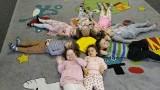 Dzieci z kazimierskiego żłobka znów razem. Po przerwie wymuszonej przez pandemię na zajęciach czekało mnóstwo atrakcji (ZDJĘCIA)