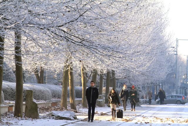 Gdzie wybrać się na spacer we Wrocławiu? Są takie miejsca, do których chętnie wracamy przez cały rok, bez względu na pogodę. W zimowej aurze nabierają jednak nowego blasku. Na kolejnych slajdach, do których można przejść za pomocą strzałek lub gestów, podpowiadamy pomysły na zimową przechadzkę.