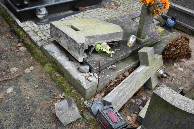 Dziki grasują także na zielonogórskim cmentarzu. Ludzie wyrzucają śmieci wokół ogrodzenia, a także jedzenie, co tylko zachęca zwierzęta do odwiedzania nekropolii