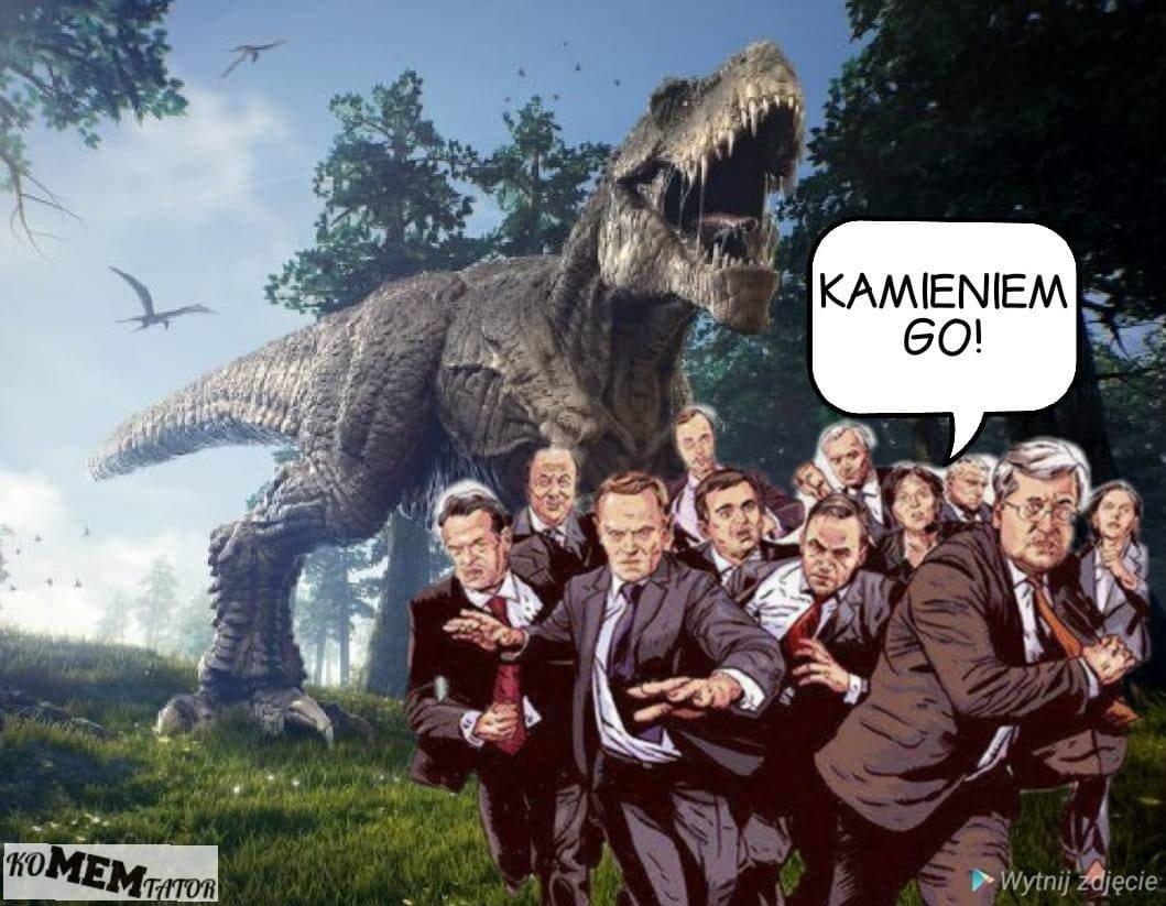 Ewa Kopacz O Dinozaurach Memy Hitem Internetu Ludzie Rzucali