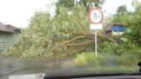 Burze w powiecie krasnostawskim. Zerwany dach, połamane drzewa (WIDEO)