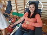 Kolejna akcja krwiodawstwa w Sędziszowie. Krew oddało 78 honorowych bohaterów (ZDJĘCIA)