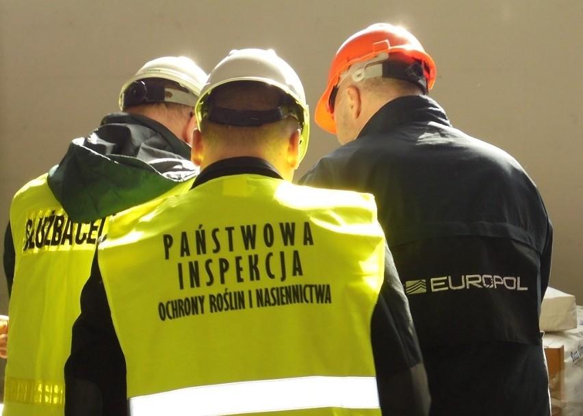 Lewy interes kwitnie na przygranicznych targowiskach. Zarekwirowali pestycydy za 80 milionów euro