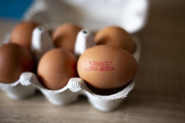 Oznaczenia na jajkach