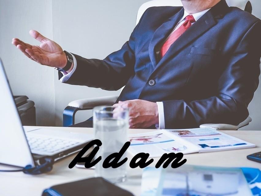 Adam kieruje się logiką, co owocuje sztywnością zachowań....