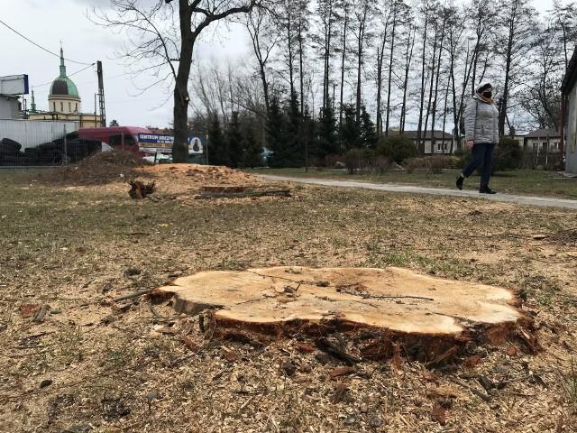 Wycinki drzew w Rzeszowie to ostatnio gorący temat. Media informują o coraz to nowych. Na zdjęciu teren przy ul. Wyspiańskiego, gdzie doszło ostatnio do wycinki